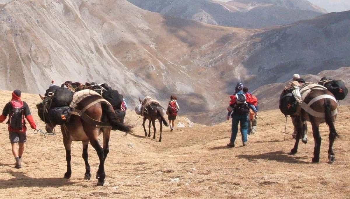 viaje sicilia en burro